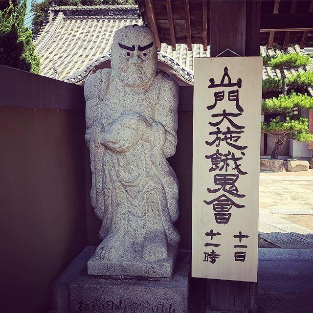 西郷どんみたい#西郷どん #佐島 #上島町