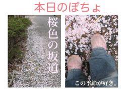 2006-4-12-3.jpg