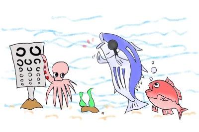 魚の視力測定