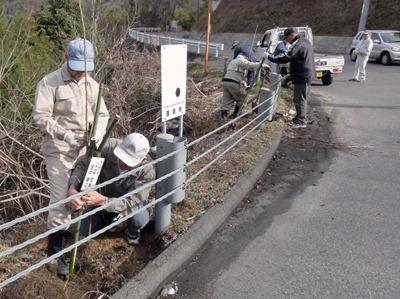 奥山ダム周辺に植樹「私の桜」216本 自然愛する中庄の会