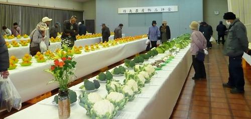 JA因島農産物品評会 田頭常吉さん尾道市長賞