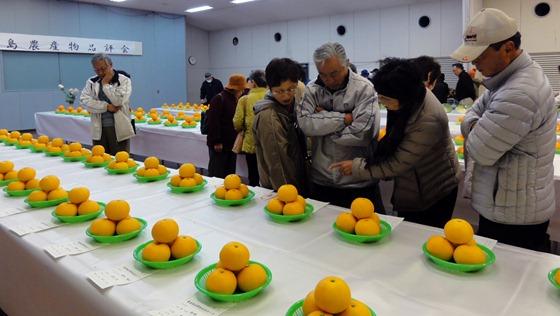 JA因島農産物品評会 山内昭治さんに尾道市長賞