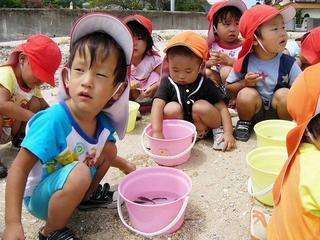 [8月20日] 小学生らが放流 フグとヒラメ
