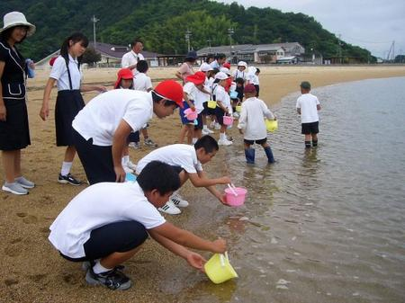 [7月 8日] トラフグ放流 大浜の子供達