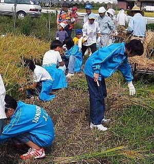 [9月18日] 因島子ども会 稲刈り体験