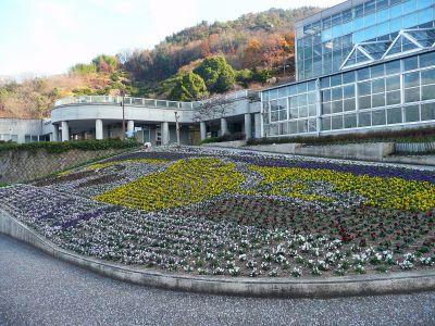 因島フラワーセンター 正月準備整う