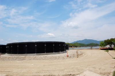 トラフグ・オニオコゼなどの高級魚 イクラス「閉鎖循環型養殖場」因島重井町新開に円型水槽建設